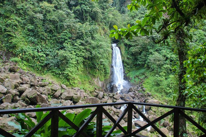 Dominica waterfall Trafalgar Falls