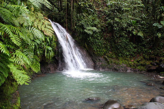 Guadeloupe waterfall viewpoint
