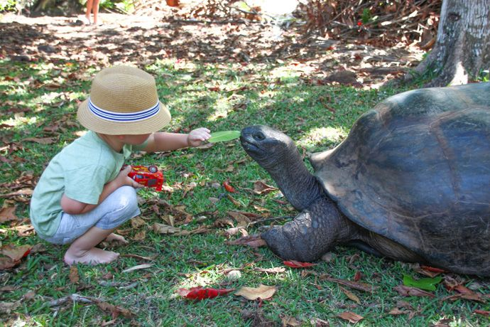 Praslin excursion to curieuse island seychelles