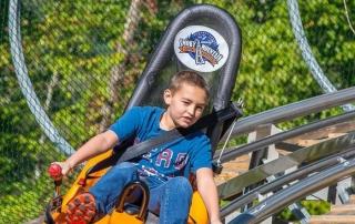 alpine roller coaster pigeon forge tn