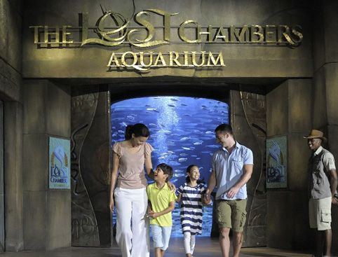 Read more about this attraction