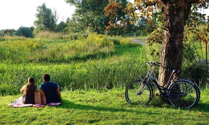 Niagara on the lake bike riding tours Canada