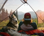 best tents for dog owners camping