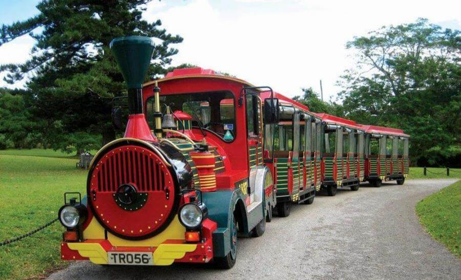 best things to do in Hamilton Bermuda - Trolley train tour