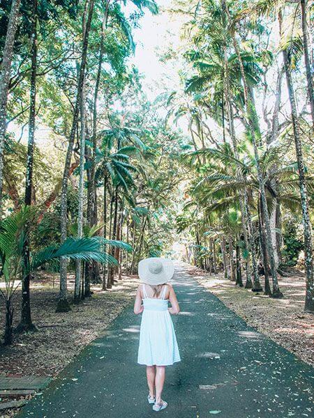 mauritius north island tour itinerary SSR Botanical Gardens