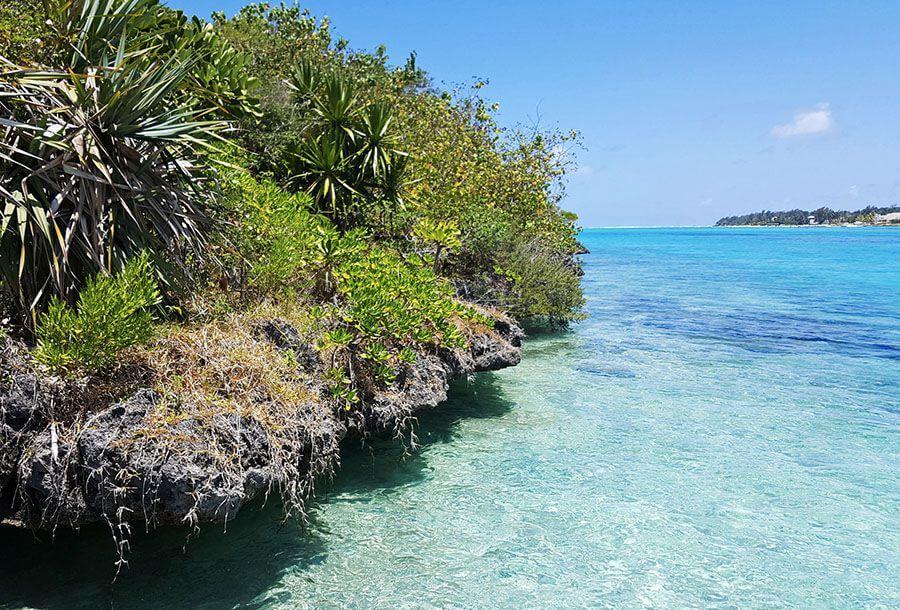 ile aux aigrettes hiking trail mauritius