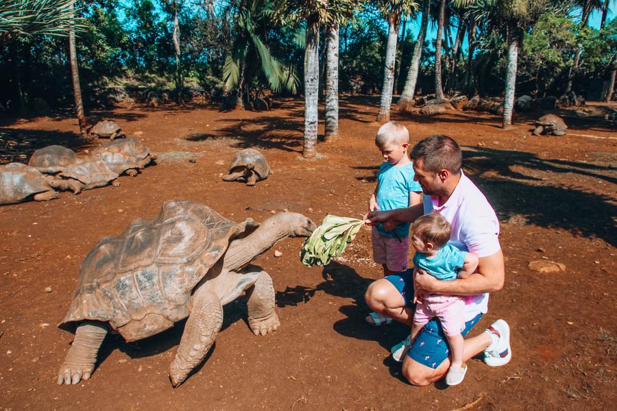 mauritius south island tour itinerary - la vanille nature park
