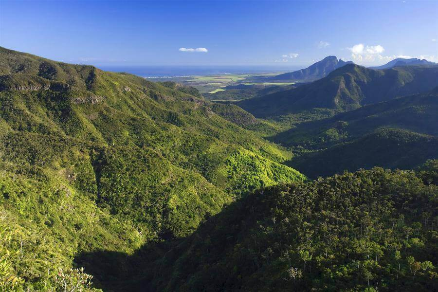 Best Non-touristy Things to do in Mauritius - Black River Gorges National Park